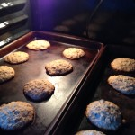 Chocolate Chip Coconut Oatmeal Cookies 1